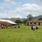 Presbyterian Teacher Training College/ Presbyterian Secondary School Mbengwi Campus View
