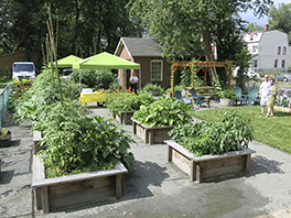 A vibrant and sustainable garden in an urban setting at Bethany House of Hospitality Photo by David Byers