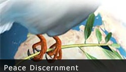 peace discernment