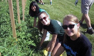 During a Mission Blast, youth tend a DTE Energy community garden and help with its food bank