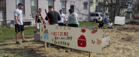 Westside community garden picture